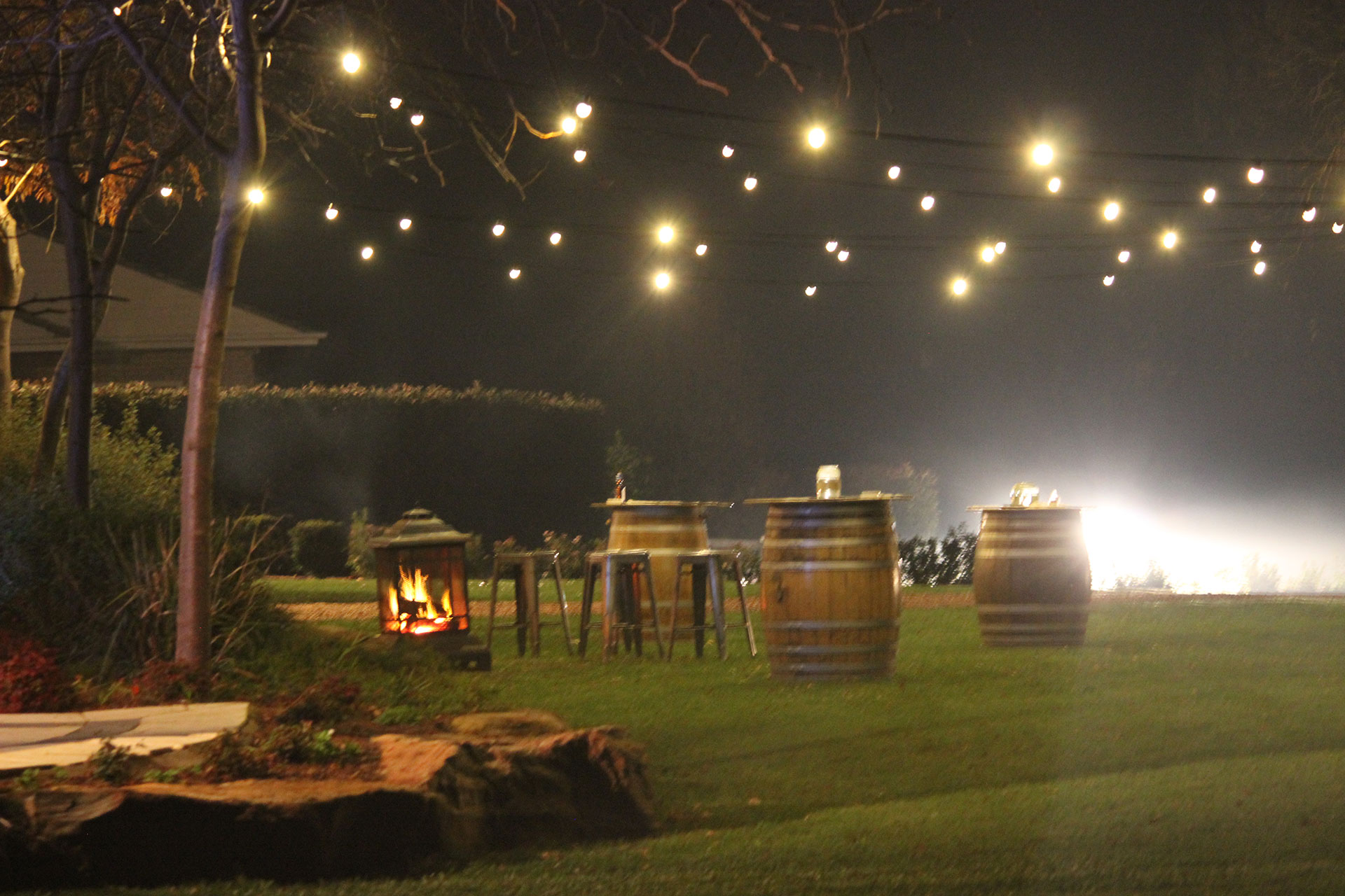 Adelaide hills howard vineyard festoon lighting hire